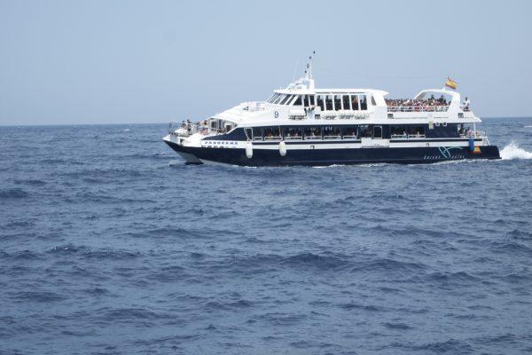Catamarán Panorama